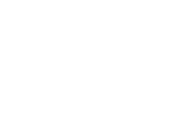 servers_shmidt_sergey